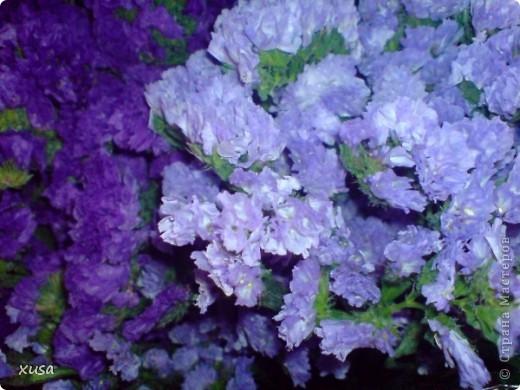 """Вот такие цветочки, под названием статица появились у меня дома! Но оставлять их так просто не захотела, они осыпаются. Вот решила их """"закрепить""""  на дереве. И в итоге вот что получилось! фото 8"""