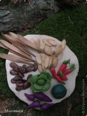 """В детском саду у сына объявили конкурс семейных поделок из природного материала. Мы с сыном придумали сказочную историю, которую назвали """"Праздничный ужин в лесу"""".  фото 8"""