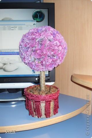 """Вот такие цветочки, под названием статица появились у меня дома! Но оставлять их так просто не захотела, они осыпаются. Вот решила их """"закрепить""""  на дереве. И в итоге вот что получилось! фото 1"""