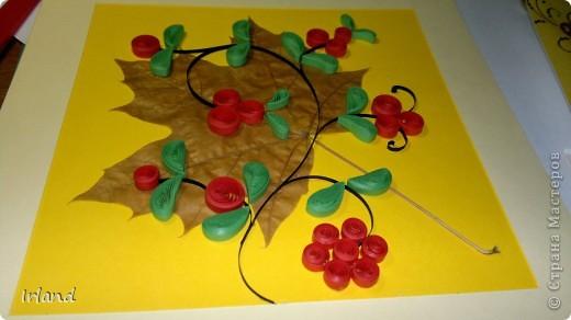 Осень, что может быть более осенним чем желтый кленовый лист, и вкусные ягодки =) фото 3