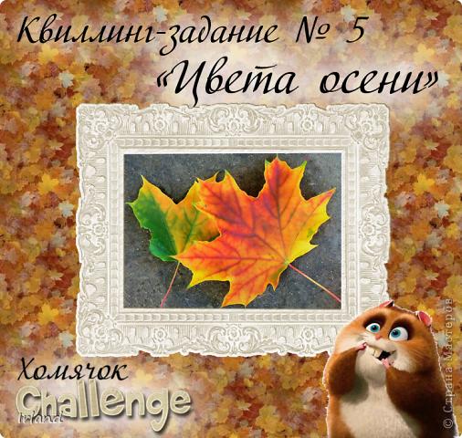 Осень, что может быть более осенним чем желтый кленовый лист, и вкусные ягодки =) фото 7