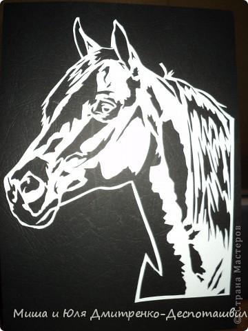 Лошадь+ схема | Страна