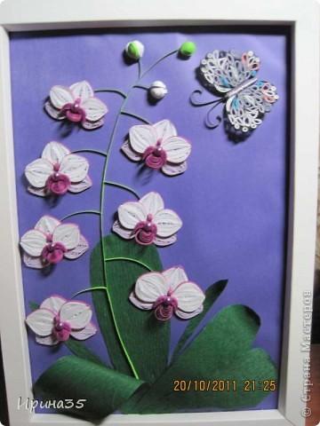 8 октября в Украине отмечали день юриста, а еще в этот день родилась одна моя знакомая - прекраснейший человек, грамотный Юрист (именно с большой буквы), которая является моим учителем и примером для подражания. Она очень любит цветы, а особенно - орхидеи, поэтому я еще летом задумала сделать для нее маленькое панно с изображением этих царских цветов. Теперь, после того как они были подарены с большим опозданием по причине отсутствия именниницы в день рождения, выставляю их на ваш суд, Мастера СМ! фото 1