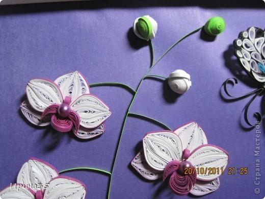 8 октября в Украине отмечали день юриста, а еще в этот день родилась одна моя знакомая - прекраснейший человек, грамотный Юрист (именно с большой буквы), которая является моим учителем и примером для подражания. Она очень любит цветы, а особенно - орхидеи, поэтому я еще летом задумала сделать для нее маленькое панно с изображением этих царских цветов. Теперь, после того как они были подарены с большим опозданием по причине отсутствия именниницы в день рождения, выставляю их на ваш суд, Мастера СМ! фото 3