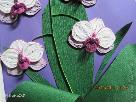 8 октября в Украине отмечали день юриста, а еще в этот день родилась одна моя знакомая - прекраснейший человек, грамотный Юрист (именно с большой буквы), которая является моим учителем и примером для подражания. Она очень любит цветы, а особенно - орхидеи, поэтому я еще летом задумала сделать для нее маленькое панно с изображением этих царских цветов. Теперь, после того как они были подарены с большим опозданием по причине отсутствия именниницы в день рождения, выставляю их на ваш суд, Мастера СМ! фото 2