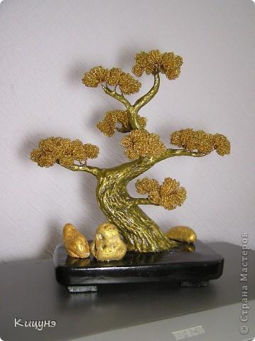 Золотой бонсай и Ледяное дерево фото 6