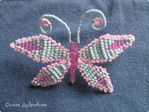 Поделка изделие Бисероплетение Бабочки и другие насекомые Бисер.