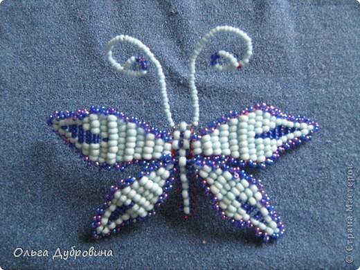 Поделка изделие Бисероплетение Бабочки и другие насекомые Бисер фото 3.