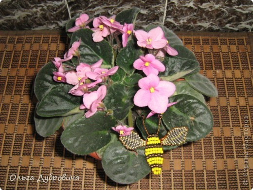 Поделка изделие Бисероплетение Бабочки и другие насекомые Бисер фото 11.