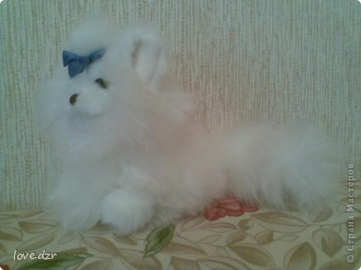 Мех натуральный.Хотела сделать кошку,но похоже получилась собачка. фото 3