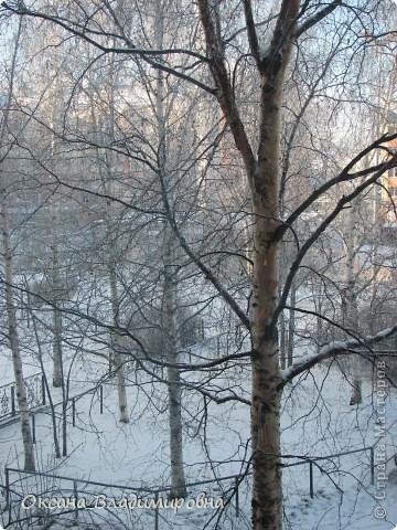 Ну вот решила показать, нашу снежную осень)) фото 2