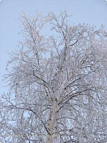 Ну вот решила показать, нашу снежную осень)) фото 3