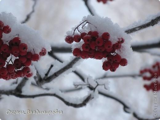 Ну вот решила показать, нашу снежную осень)) фото 5