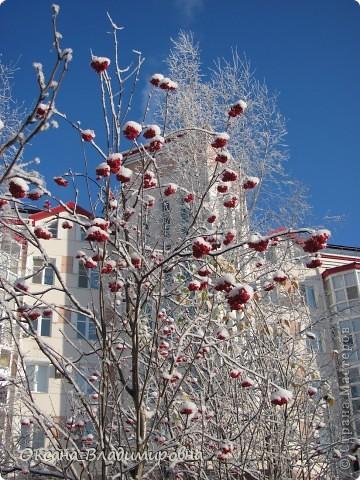 Ну вот решила показать, нашу снежную осень)) фото 8
