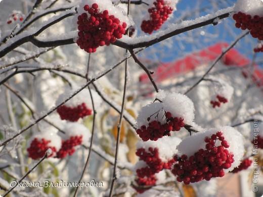 Ну вот решила показать, нашу снежную осень)) фото 12