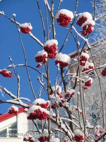 Ну вот решила показать, нашу снежную осень)) фото 13