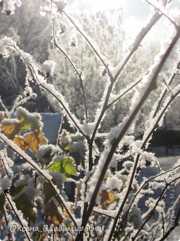 Ну вот решила показать, нашу снежную осень)) фото 16