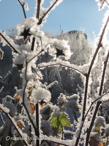 Ну вот решила показать, нашу снежную осень)) фото 17