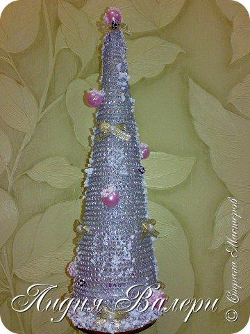 Так как гласит календарь Новый 2012 год - год черного водяного дракона. Вот у меня и появилась идея сделать елочку, но не простую, а  приносящую удачу, счастье, богатство.... в Новом 2012 году. фото 11