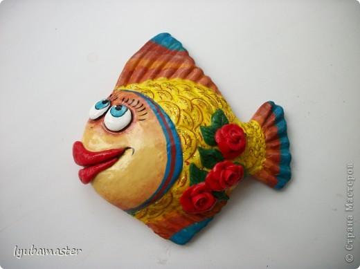 рыбы фото 12