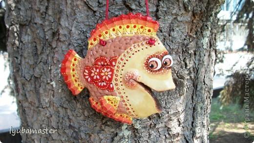 рыбы фото 3