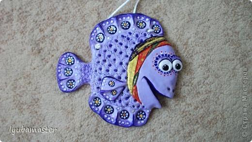 рыбы фото 8
