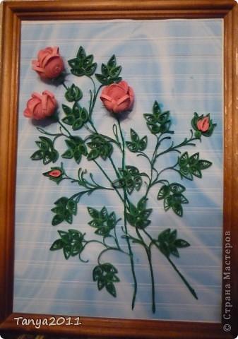 Вот такой букетик роз. фото 4