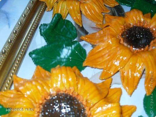 Неопознанные цветы! фото 4