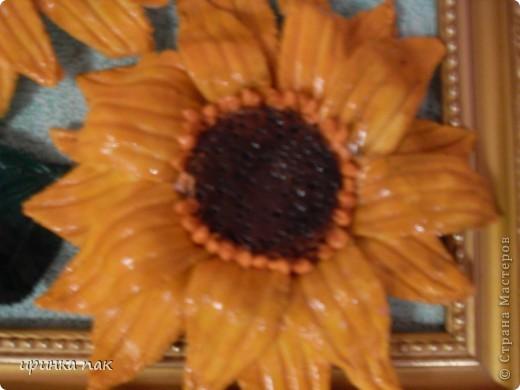 Неопознанные цветы! фото 5