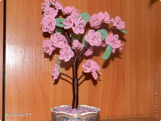 орхидея. фото 14