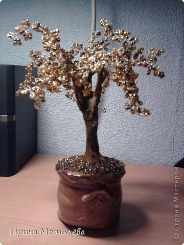 золотое деревце фото 1