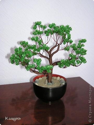 Таким дерево стало... фото 2