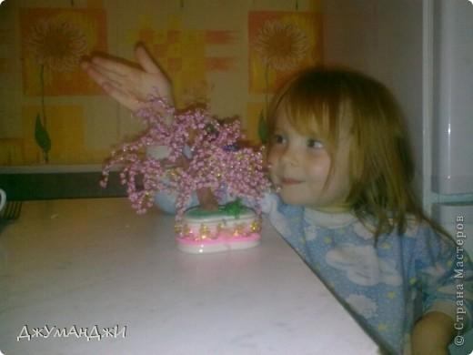 первая сакура - уехала цвести к бабушке) (рядом - идейный вдохновитель и младшая доченька - первейший ломатель-помогатель) фото 1