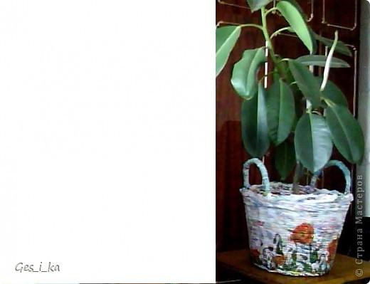 сплела кашпо для цветка/ размер в высоту 24см, диаметр дна 24 см, диаметр верха 33 см. Теперь хочется такую корзинку. фото 4