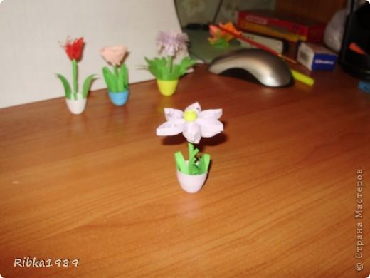 Все вместе. цветочки очень маленькие. фото 2