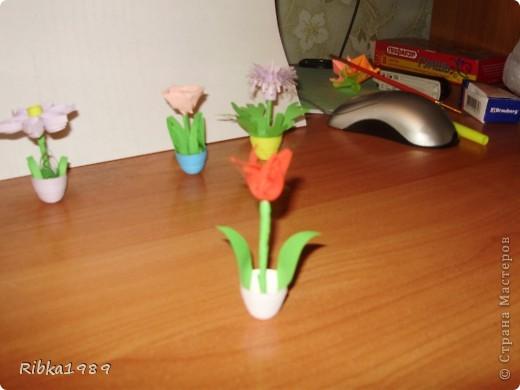 Все вместе. цветочки очень маленькие. фото 3