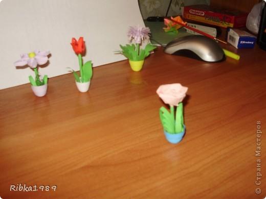 Все вместе. цветочки очень маленькие. фото 4