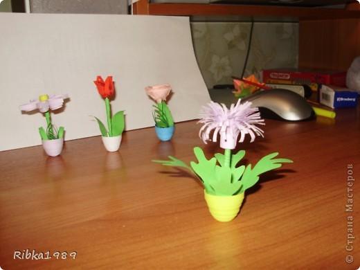Все вместе. цветочки очень маленькие. фото 6