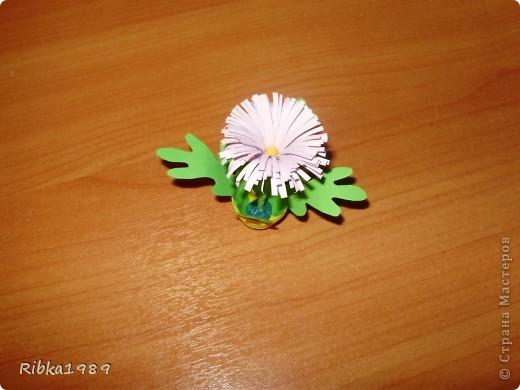 Все вместе. цветочки очень маленькие. фото 7