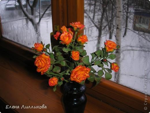 Кустовые розы из ХФ фото 2