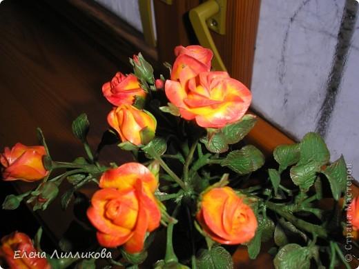 Кустовые розы из ХФ фото 5