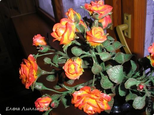 Кустовые розы из ХФ фото 1