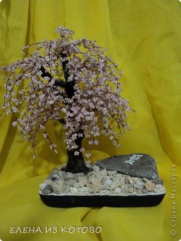 первое дерево из бисера фото 2