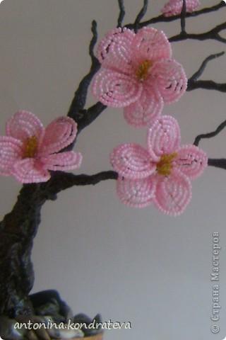 как сплести цветы из бисера Клуб мастеров и мастериц meta namedescription contentкак сплести цветы.