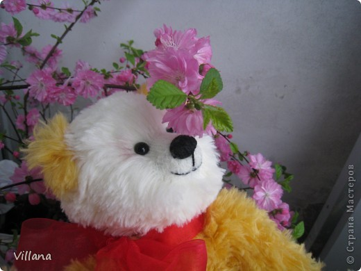 Приветствую всех жителей дружной страны мастеров)))) фото 4