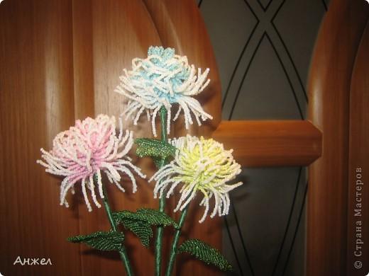 Наши первые цветы, достойные чужого внимания ) Увидела их на сайте Радуга рукоделия, спасибо за МК автору niki_lelik (http://biseroclub.forumy2x2.ru/t1085-topic#14068 ), делаются сравнительно легко., но получаются тяжеловатыми, крепить пришлось на стальную спицу.  фото 1