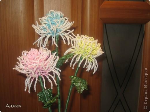 Наши первые цветы, достойные чужого внимания ) Увидела их на сайте Радуга рукоделия, спасибо за МК автору niki_lelik (http://biseroclub.forumy2x2.ru/t1085-topic#14068 ), делаются сравнительно легко., но получаются тяжеловатыми, крепить пришлось на стальную спицу.  фото 5