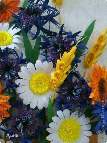 Люблю полевые цветы. Василечки, ромашечки... Пшеничка...  фото 3