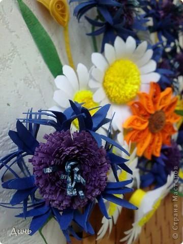 Люблю полевые цветы. Василечки, ромашечки... Пшеничка...  фото 4