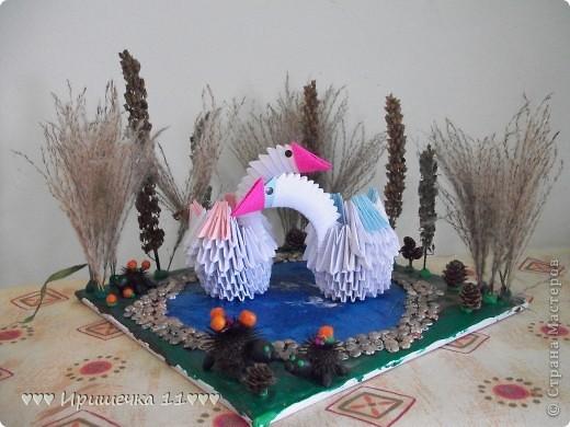 озеро с лебедями фото 1